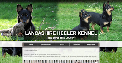 Lancashire Heeler Kennel The Seven Hills Country